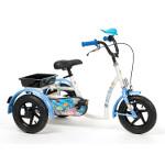 Tricycle Aqua pour enfant handicapé