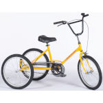 Tricycle Tonicross Basic pour enfant handicapé