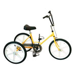Tricycle Tonicross Basic personnes handicap�es