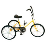 Tricycle Tonicross Basic pour enfant handicap�